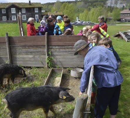 Trivelig: Barn og dyr er i fokus på Dølmotunet.