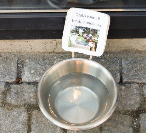 BLIR TØRST: Er du i Ski sentrum med hunden din, er det et lite vanningshull for Passopp utenfor Narvesen vis-à-vis torget.
