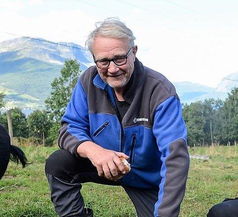 – Vi har funnet igjen de to kvigene, kalven er fortsatt borte, sier John G. Haugen.