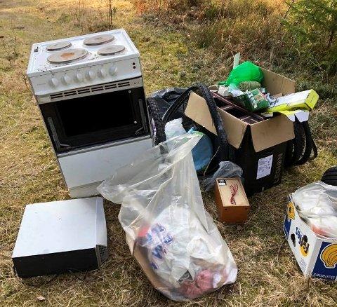 GEN: Slik ser det ut ved Vesttorpskogen i Rokke. Her har avfall blitt dumpet i naturen. HAs tipser frykter at det blir flere slike syn hvis ikke Rokke Avfallsanlegg åpnes for privatpersoner snart.
