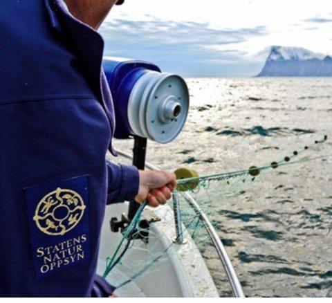 BESLAG: Statens naturoppsyn har anmeldt tre lofotinger for ulovlig laksefiske.