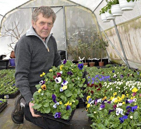 GARTNEREN: Ole Myren driver det som nå er Freis eneste gartneri. – Stemorsblomsten er først. Den tåler 2-3 minusgrader, sier Myren.