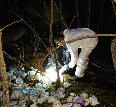 Jaktet spor: Kommunalsjef Kurt Peder Hjelvik rykket ut sammen med en medarbeider sent fredagskveld, for å ta hånd om et uvanlig og ekkel funn. De rykket ut for å rydde opp, og lete etter spor på hvem som står bak.