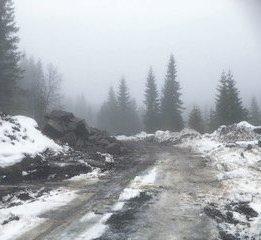 Ferskt bilde av veien Erik Grimm omtaler i innlegget. Leserfoto