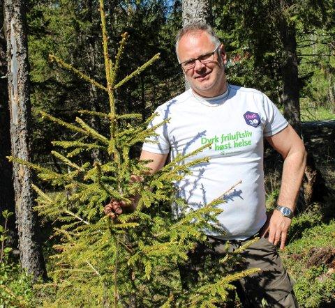 Ordfører i Grane Bjørn Ivar Lamo synes ikke det er nødvendig å verne mer skog i Grane nå. Her ved noen unge bartrær ved bygdetunet.