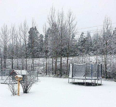 VINTERLAND: Mandag morgen var det hvitt på bakken på Buer. Agnes Hermansen tok dette bildet som viser at kong Vinter er innom enda en gang før våren fester sitt grep.