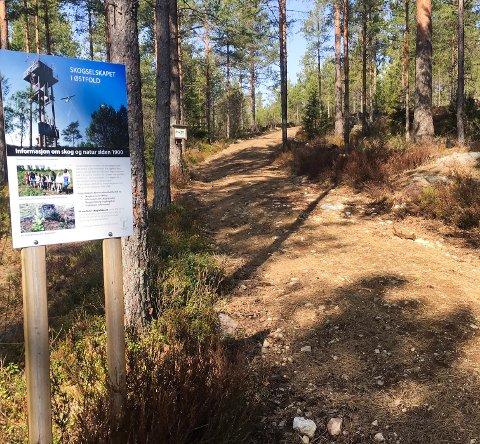 UTBEDRET: Rakkestad kommune utbedret stien opp til Linnekleppen i 2017 og 2018. Den er nå bredere og har et renere underlag.