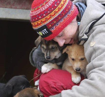 Edland har fulgt de fleste hundene i spannet fra de var valper. Foto: Anne Karang