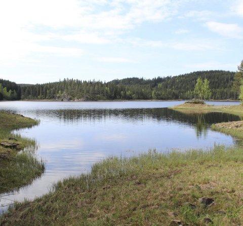 SNART I MÅL: Kommunestyret er siste hinder for en kommunal overtakelse av dammen i Nord-Fløyta. Foto: Rune Fjellvang