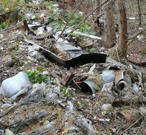 Skjemmende: Turgåer Heidi Libråten kom over mye søppel i skogen på Linåkermoen i Aurskog.