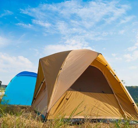 Utenlandske turister, uten lovlige papirer, ønsket å slå opp telt på Moskenes Camping.