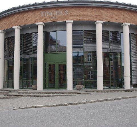 SKADEVERK: En tenåringsgutt bosatt i Rakkestad ble i Sarpsborg tingrett dømt til 150 timers samfunnsstraff forrige uke.