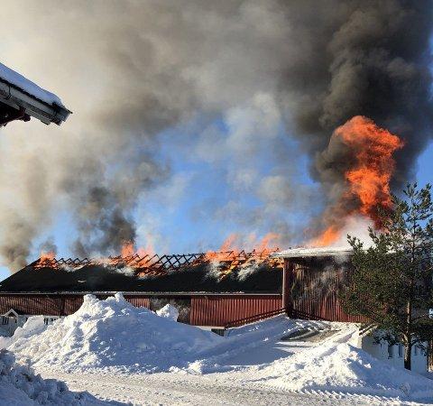 HØYE FLAMMER: Her står låven i full fyr. FOTO: POLITIET