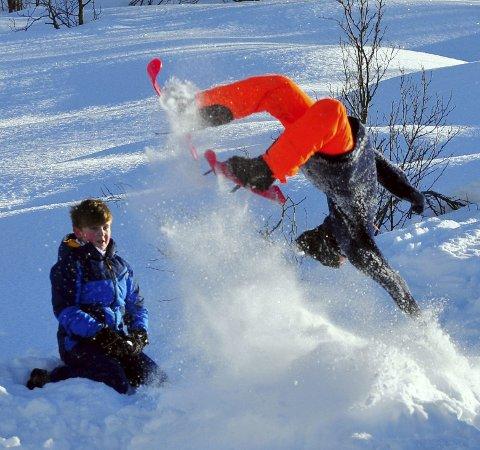 Friluftsrådet legger til rette for aktiviteter før jul.