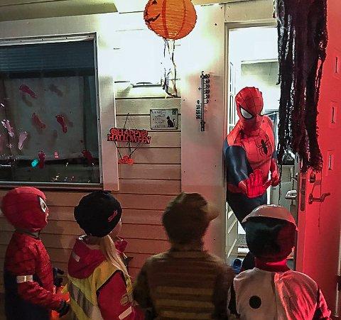 Det er stort sett barna som skremmer nabolaget på halloween, men vi lurer på om ikke en del voksne har det ganske gøy på den skumle kvelden også. Klarer du å vise det med et blinkskudd, kan du vinne smågodt og et halvt års abonnement på amta.no.