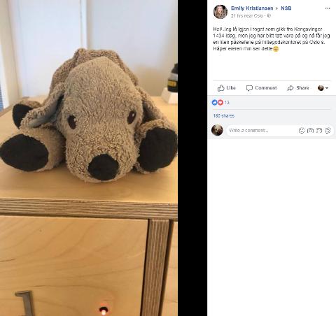 BYPÅSKE: Emily Kristiansen håper at eieren til hundebamsen ser dette innlegget på Facebook, eller at noen nær kan bidra til å oppklare dette lille påskemysteriet slik at det får en lykkelig slutt.