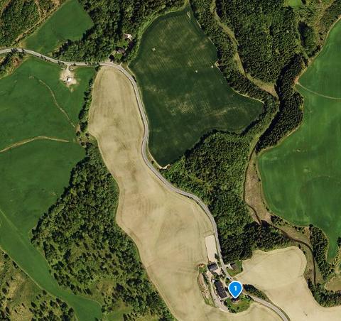 VARSLET: En person har varslet Norges vassdrag- og energidirektorat om veltede trær ned mot Ryggebekken. Det omtalte området er et lite område med trær til høyre for jordet øverst i bildet. Markert i bildet er Aaraas gård i Årosveien.