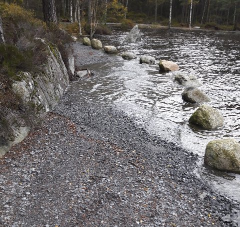 ØYDELEGGANDE: Vatnet på turstiane rundt Opsangervatnet er øydeleggande. Dei store steinane er i ferd med å bli dratt ut i vatnet etter den høge vasstanden i førre veke. (Foto: Privat).