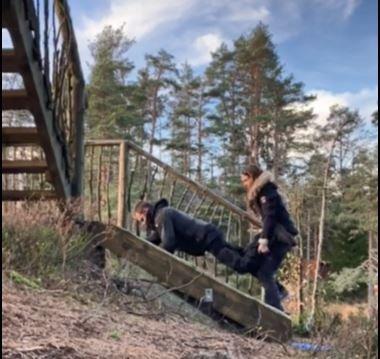 TRILLEBÅR: Christian Gyldenøhr kom seg til topps i trehytta. Anne Cathrine Austad tok ham i beina og kjørte trillebår opp den bratte trappa.