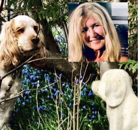 STJÅLET: Hundestatuen som lå på gravplassen til Anne Stavnes Wilhelmsens døde hund ble plutselig borte en natt.