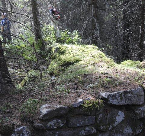 Steinmur: Ikke så mye sto igjen etter hus-mannsplassen Brøto. I bakgrunnen Torodd Lybeck (t.h.) og Terje Myrvang.