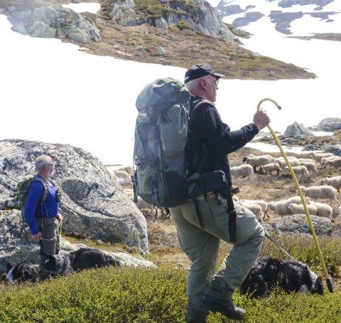 Per Helge Sekse er grunneigar, sauebonde og jegar.