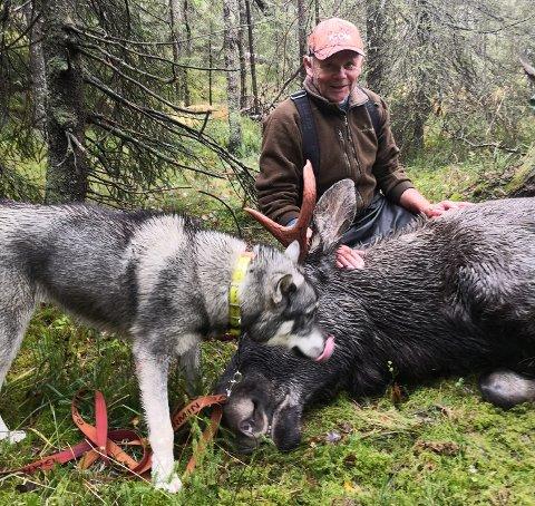 VELLYKKETJAKT:Leif Karlsen med jämthunden Nomi og en 212 kilo tung elgokse han felte opp mot Ovann torsdag formiddag.