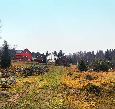 TV INNSPILLING: Steinsjøen gård i Østre Toten er valgt som lokasjon for årets Farmen-innspilling, som starter i juli og sendes på tv i høst.
