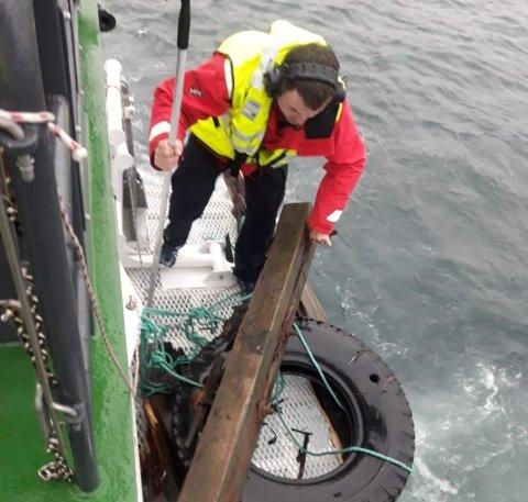 NOK EN FANGST: Disse  kaipillarene har stadig opp dukket i havnebassenget i Tromsø de siste par ukene. Her plukker losbåten opp nok en stokk.