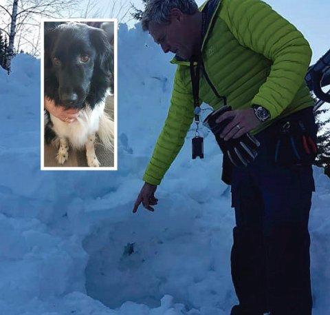 Enzo ble funnet under to meter med hardpakket snø etter en time og ti minutter. Foto: Privat.