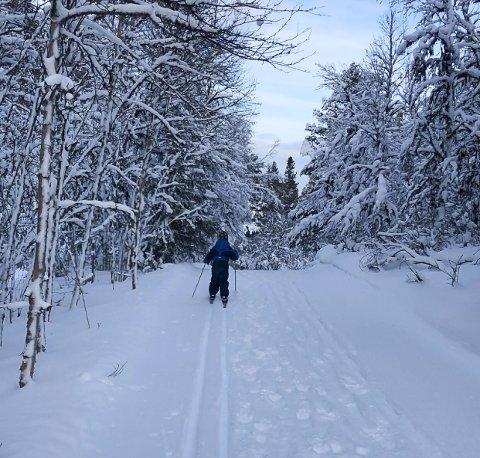 Ut på skitur i helga?: Her finner du løypeoversikt.