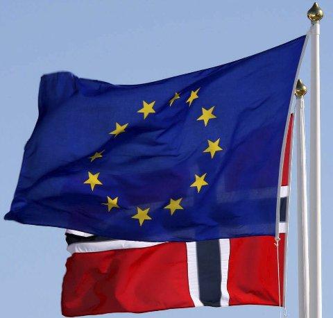 Sier Nei: Finnmarkinger sier fortsatt nei til EU. Det viser en fersk spørreundersøkelse. Foto: Scanpix