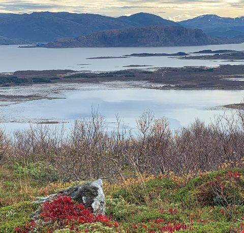 UT PÅ TUR: Nesten 300 deltakere har så langt vært med på Ti på topp. Her er et bilde fra Vettfjellet, hvor du har utsikt mot Røyfjellet og Tro.