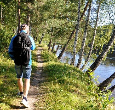 GRØNN ØY: - Vi mener Petersøya ikke skal bygges ned, og at Hønefoss skole skal beholdes som skole, sier Hans-Petter Aasen (Sp).