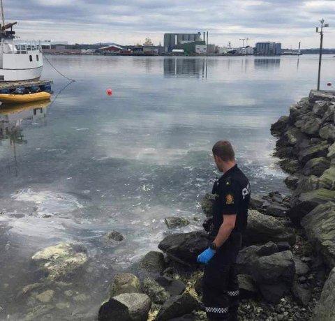 SIKRER SPOR: Gjennom helgen har politietfått flere meldinger om sjenerende lukt i forbindelse med utslipp av fiskefett i Husøy-området. Søndag var de på stedet.