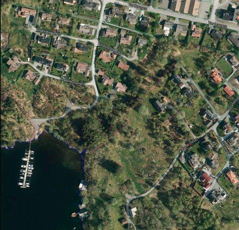 Her skal Austrheim kommune bygga sju nye omsorgsbustader. Før det skal det gjerast ein del ryddehogst.