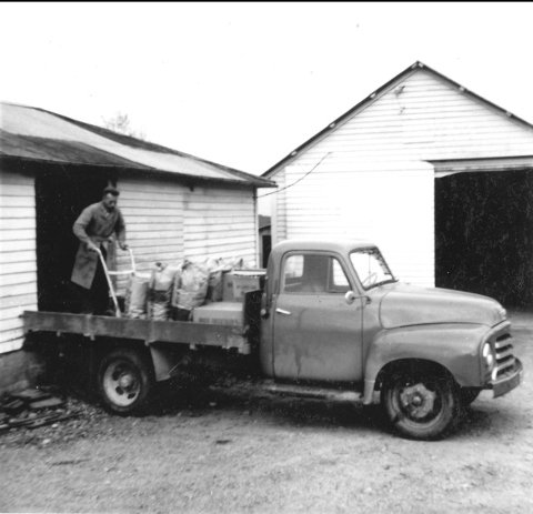 Arne Ersland i full sving ved lastebilen, og klar for utkjøring av kraftfôr til kunder fra lager. Bildet er tatt ca. 1960. Foto: Privat