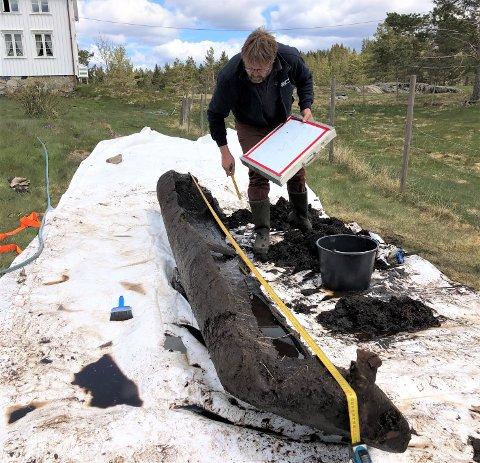 – ET PRAKTEKSEMPLAR: Holmestrandingen Pål Nymoen fra Norsk Maritimt Museum inspiserer stokkebåten som nylig ble funnet i Froland.