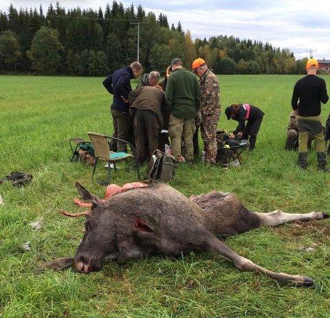 Fredag morgen var det mange i Steinkjer som dro på elgjakt. Arkivbilde fra 2016.