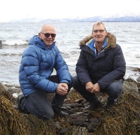 HER STARTET DET: Wiggo Knutsen (t.v.) og Ottar Bakke tilbake i færesteinene i Pundsvika der historien om oppdrett i Ballangen startet.  Alle foto: Fritz Hansen