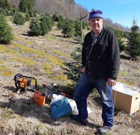 PLANTING: Sjur Huke er godt i gang med juletreplanting.