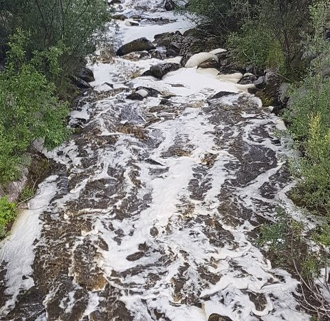 UTSLEPP: Tysdag kollapsa ein gjødselkumme og store mengder møk rann ut i Dalselvi ved Lambhaug i Luster.