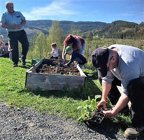 Plantevêr: Det var ein nydeleg sumardag då f.v. Arve Bergsbakken, Inger Toril Holte Breien og Olav Agnar Wold tok turen til Eventyrskogen barnehage.
