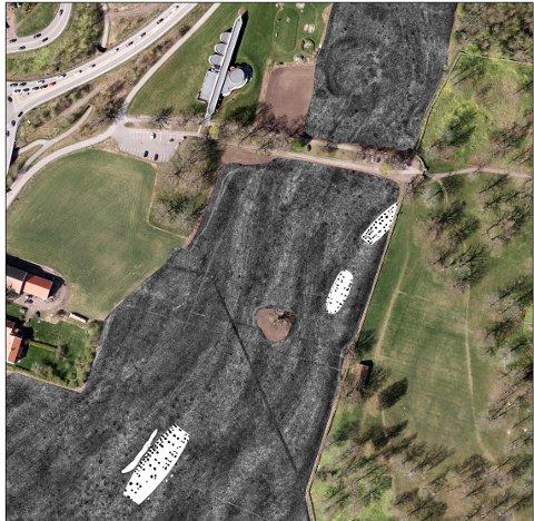 GIGANTANLEGG: Den største hallen var 63 meter lang. Nærmest parken har det stått fire haller, men ikke samtidig. De sorte prikkene er stolpehull.