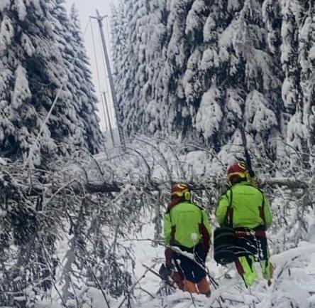 100 mann er i beredskap for å sikre at julemiddagen ikke havarerer som følge av trær som faller på ledninger. Bildet er fra en av Elvias feilretting den siste uka.