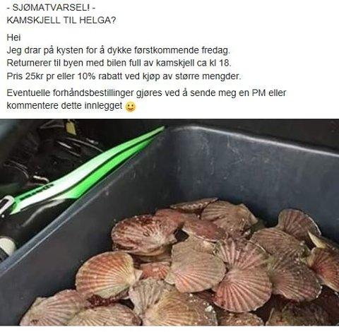 ULOVLIG. . Bildet under er hentet fra en privat facebookprofil som tilbyr kamskjell til folk i Trondheim og omegn.