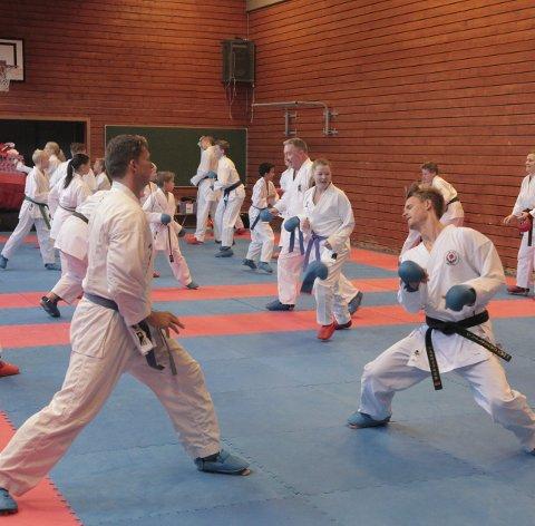 Fikk kjørt seg: Utøverne som deltok på helgas karatesamling hadde to økter lørdag og søndag. Foto: Stian Forland