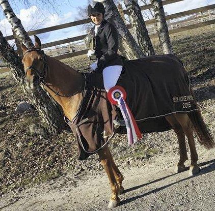Vinner i klasse Mb: Anita Kargård Klevstrand med hesten Ibhrahim vant Vinter-cup sammenlagt i klasse Mb. Foto: Privat.