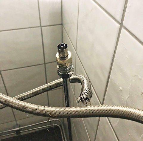 SYNDEREN: Denne fleksible dusjslangen var årsaken til at en tomannsbolig i Tønsberg i går fikk store vannskader.