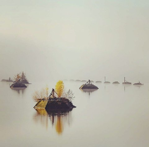 Vinner uke 41: Morgendisen og de duse fargene skaper fin stemning i dette bildet. Bra!Foto: Henning Larsen